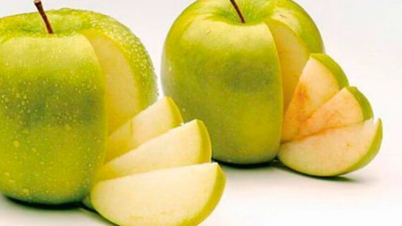 Non-browning Arctic apple breaching GMO defences