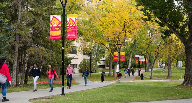 University of Calgary blind to conflict of interest