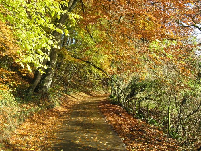 The financial road less travelled still offers a trustworthy route