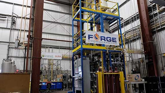 Forging new sources for biofuels and hydrocarbon-based products