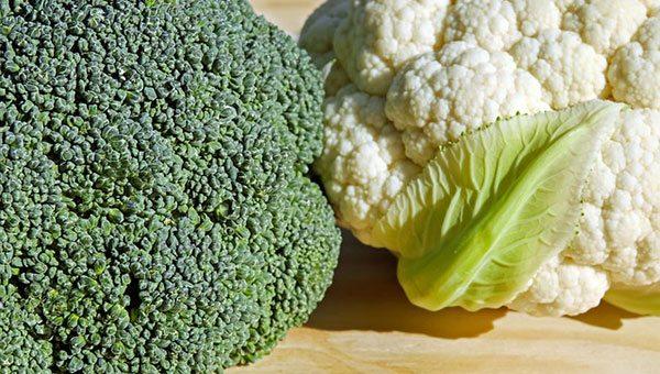 Ontario's billion-dollar plans to reduce plant food