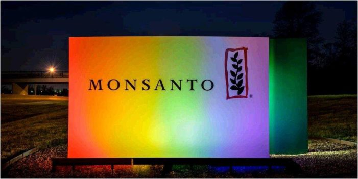Burying Monsanto could give GMO science a new lease on life