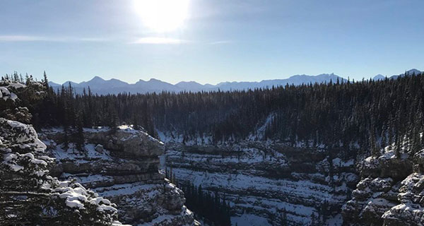 Preserving Bighorn too important for political squabbles