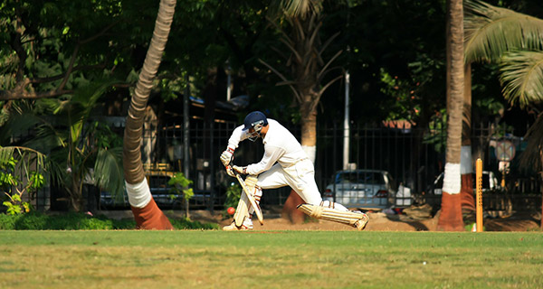 What Happened in Last Year's IPL?