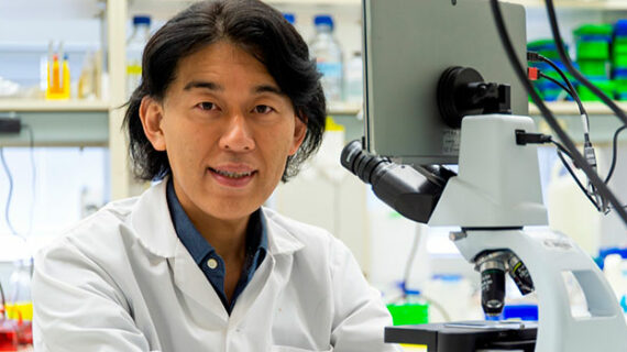 New drug to treat muscular dystrophy based on U of A research