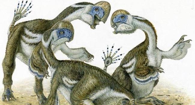 Dinosaur fossil fingers reveal new species