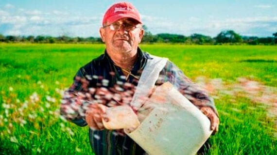 Putting a price on carbon, from farm to fork