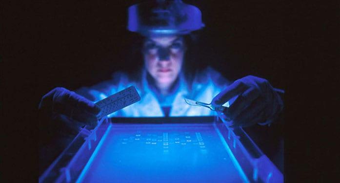 genetics dna data, privacy