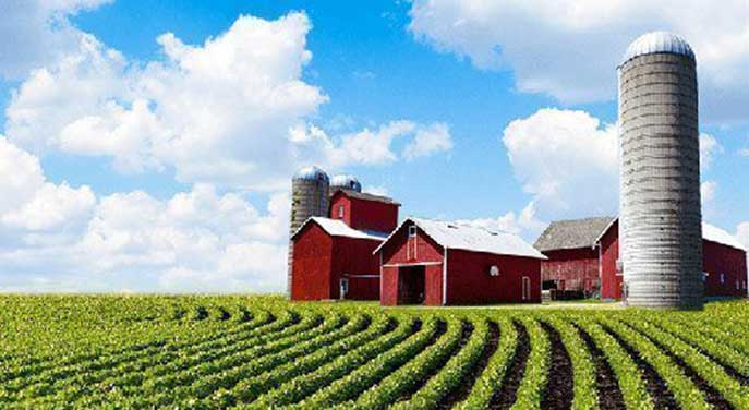 Climate change creating a new normal for farmers